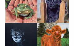 Artist Feature of the Month - February Q & A with Ellie Strand